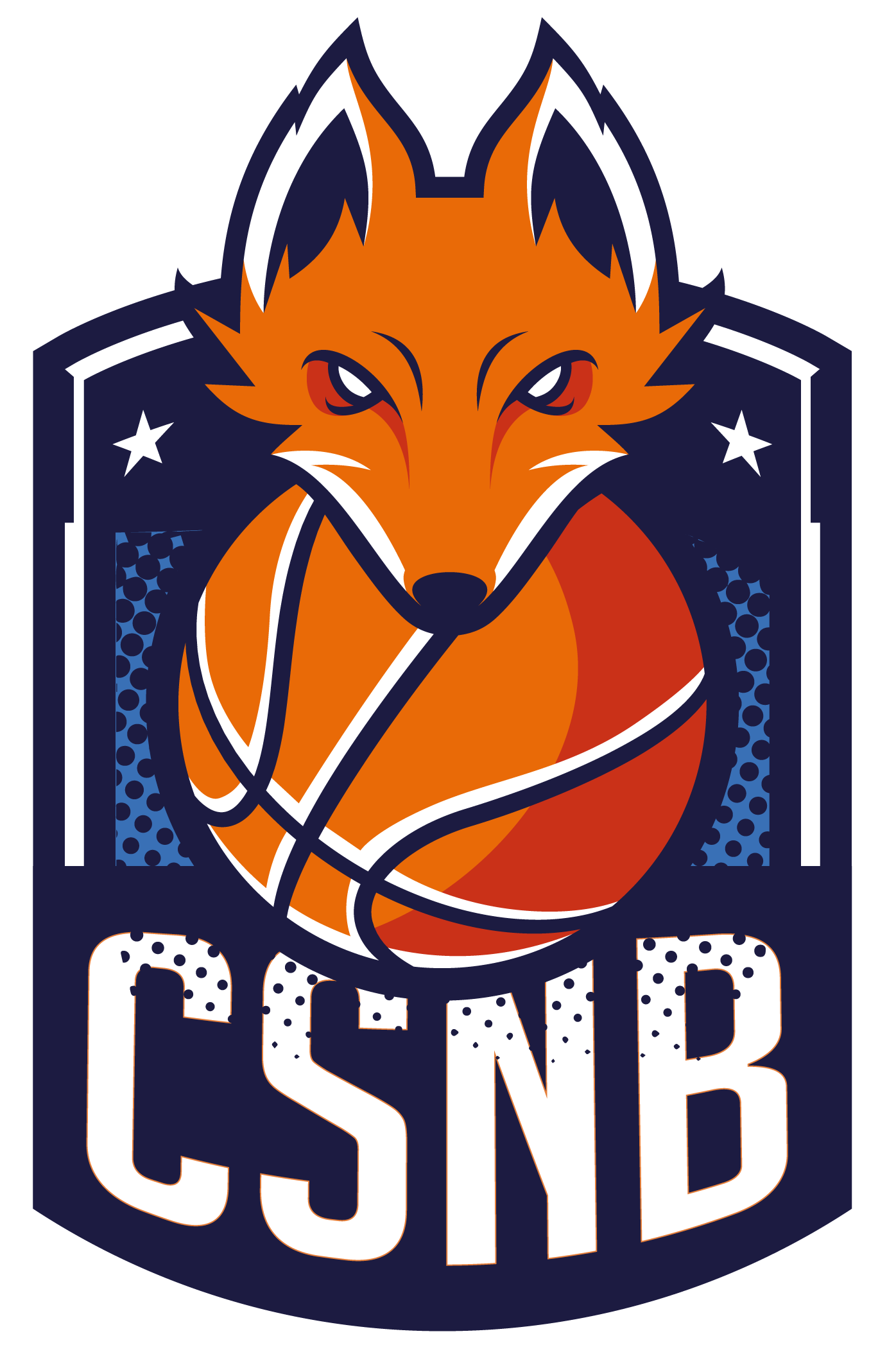 Logo CS DE NOISY LE GRAND BASKET